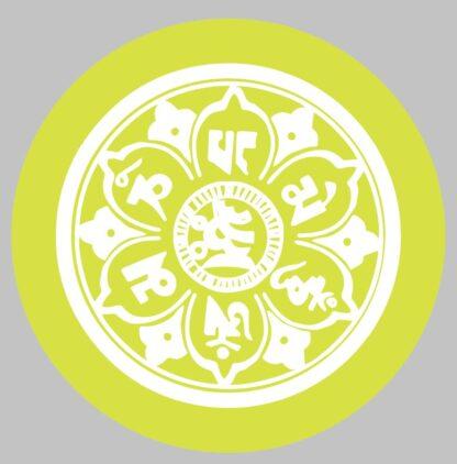 DYEDbro Frame Protection Mandala White and Color at Draco Bikes 10