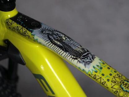 DYEDbro Frame Protector at Draco Bikes - Guadalupe 2