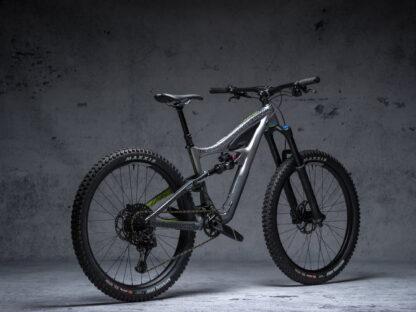 DYEDbro Frame Protection at Draco Bikes - Paisley 2