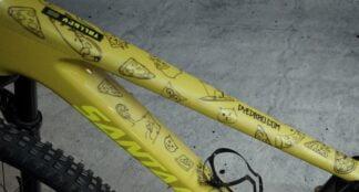 DYEDbro Frame Protector at Draco Bikes - Cats 6